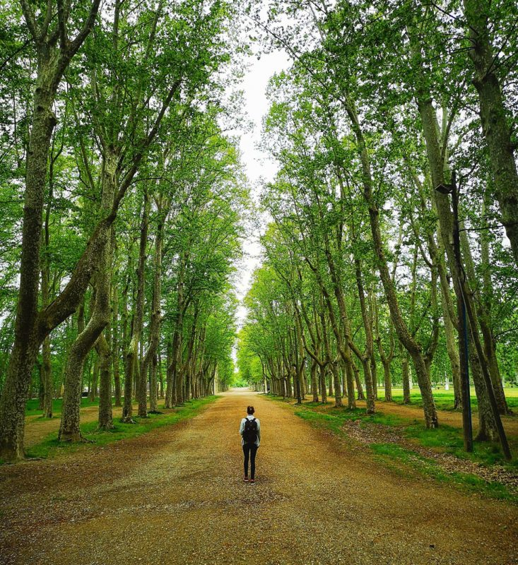 Exploring The Beautiful Tree Filled Parks In Girona, Spain - Nature Threads