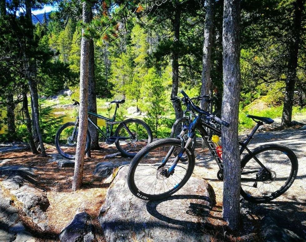 Mountain Biking On The Trails In Whistler, Canada - Nature Threads